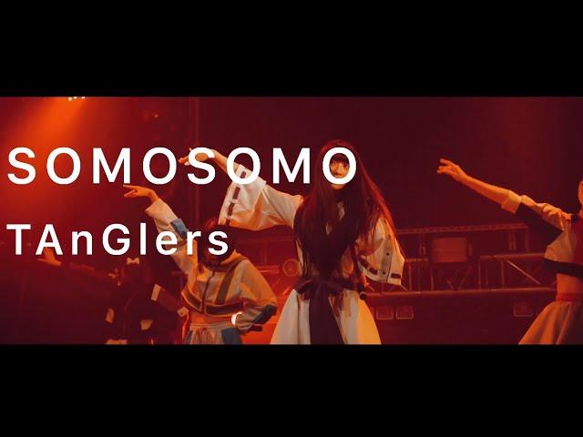 SOMOSOMO / TAnGlers [Floor Camera ver]