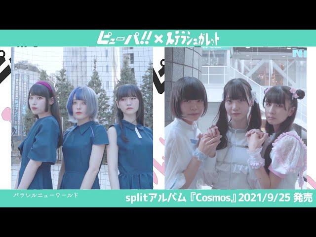 【ピューパ!!】Split Album 『Cosmos』Teaser Movie【ステラシュガレット】