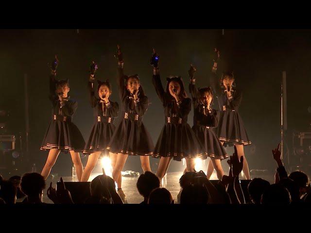 Devil ANTHEM./「Like a 熱帯夜」LIVE ver. 2021.6.5